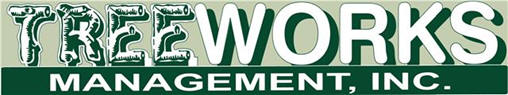 Landscaper, Arborist, Lawn Maintenance | Miami-Dade, Broward & Palm Beach Counties | Treeworks Management, Inc.